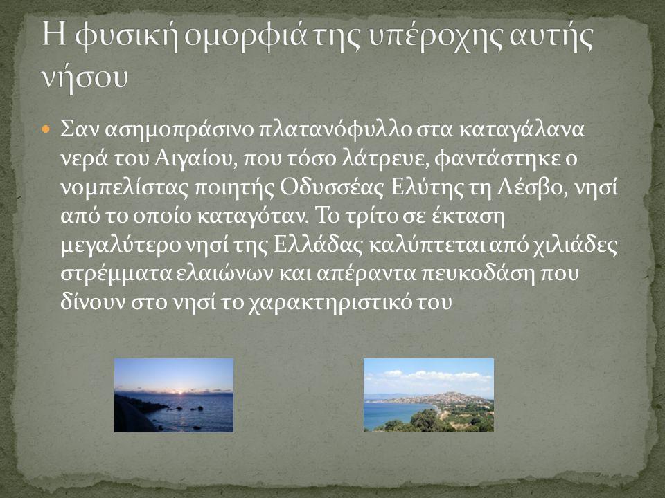 Σαν ασημοπράσινο πλατανόφυλλο στα καταγάλανα νερά του Αιγαίου, που τόσο λάτρευε, φαντάστηκε ο νομπελίστας ποιητής Οδυσσέας Ελύτης τη Λέσβο, νησί από το οποίο καταγόταν.