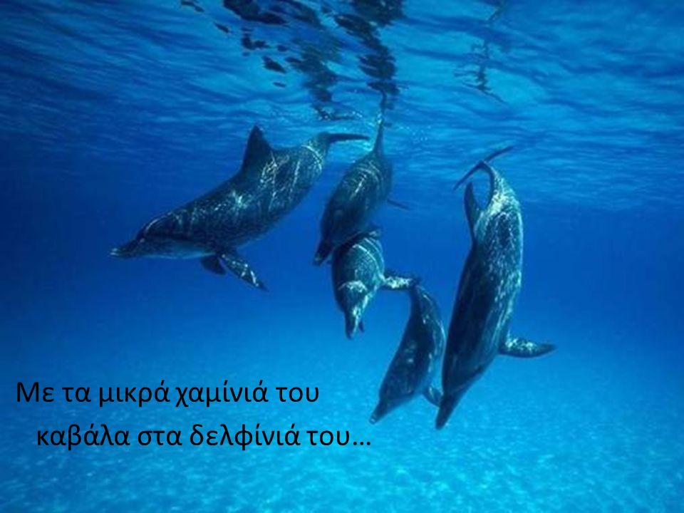 Με τα μικρά χαμίνιά του καβάλα στα δελφίνιά του…