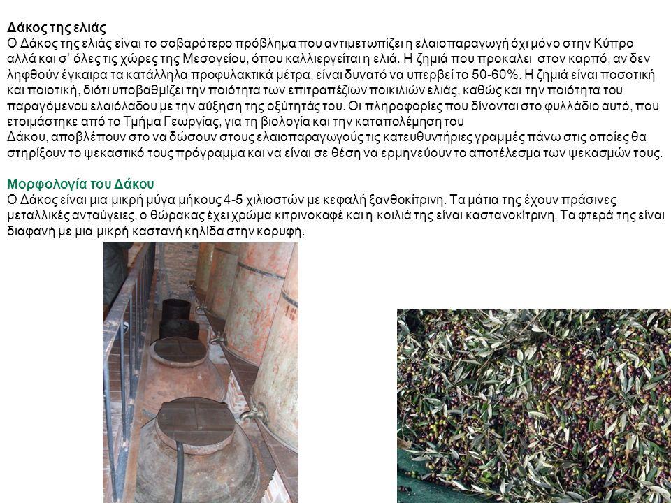 Δάκος της ελιάς O Δάκος της ελιάς είναι το σοβαρότερο πρόβλημα που αντιμετωπίζει η ελαιοπαραγωγή όχι μόνο στην Kύπρο αλλά και σ' όλες τις χώρες της Mε