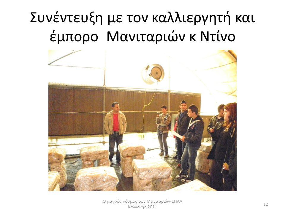 Συνέντευξη με τον καλλιεργητή και έμπορο Μανιταριών κ Ντίνο Ο μαγικός κόσμος των Μανιταριών-ΕΠΑΛ Καλλονής 2011 12