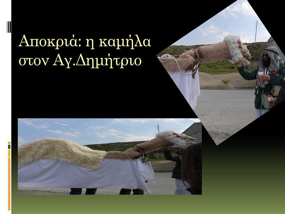 Αποκριά: η καμήλα στον Αγ.Δημήτριο