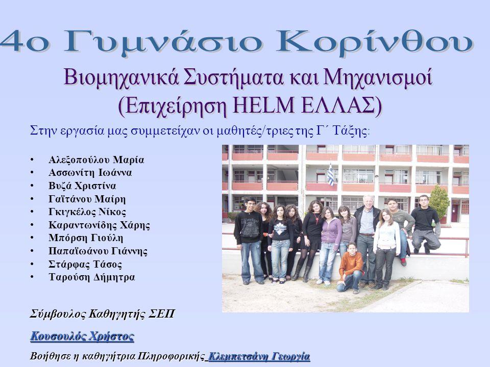 Κλάδοι και ειδικότητες εργαζομένων που απασχολούν 4ο Γυμνάσιο Κορίνθου - Σχολικό Έτος: 2007-2008