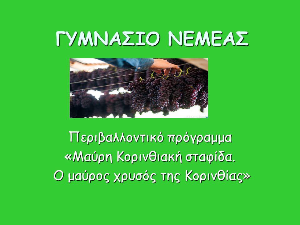 ΓΥΜΝΑΣΙΟ ΝΕΜΕΑΣ Περιβαλλοντικό πρόγραμμα «Μαύρη Κορινθιακή σταφίδα. Ο μαύρος χρυσός της Κορινθίας» Ο μαύρος χρυσός της Κορινθίας»