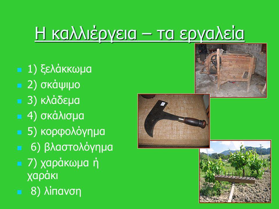 Η καλλιέργεια – τα εργαλεία 1) ξελάκκωμα 2) σκάψιμο 3) κλάδεμα 4) σκάλισμα 5) κορφολόγημα 6) βλαστολόγημα 7) χαράκωμα ή χαράκι 8) λίπανση