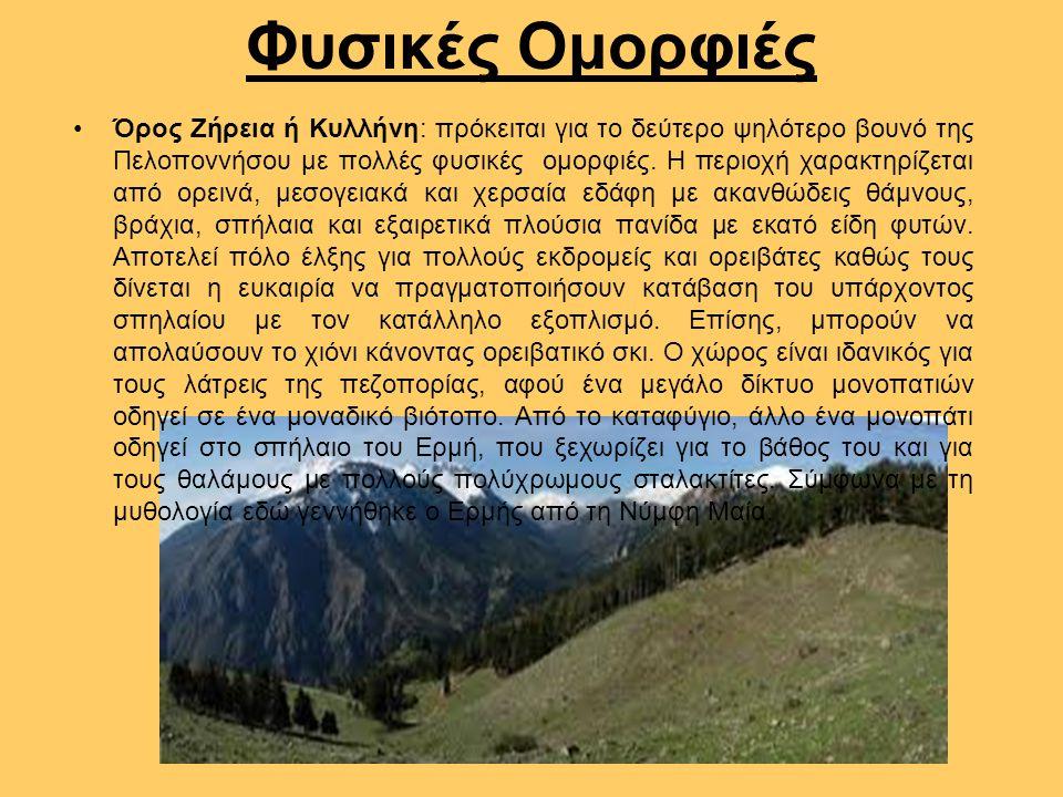 Φυσικές Ομορφιές Όρος Ζήρεια ή Κυλλήνη: πρόκειται για το δεύτερο ψηλότερο βουνό της Πελοποννήσου με πολλές φυσικές ομορφιές. Η περιοχή χαρακτηρίζεται