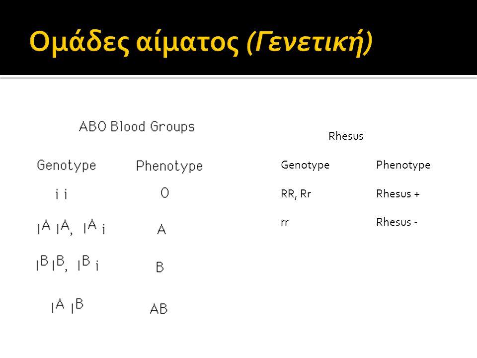 Rhesus GenotypePhenotype RR, RrRhesus + rrRhesus -
