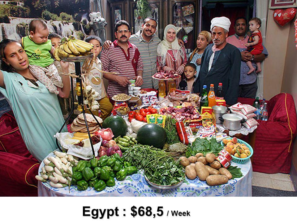 Egypt : $68,5 / Week