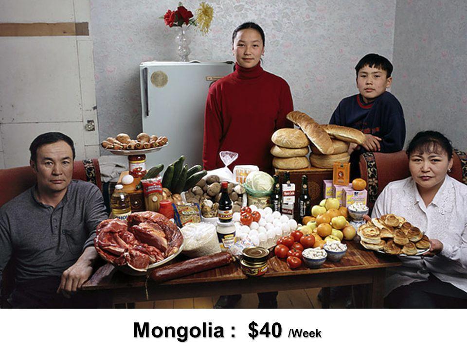 Mongolia : $40 /Week