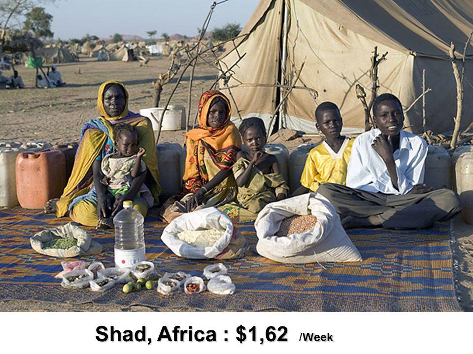 Shad, Africa : $1,62 Week Shad, Africa : $1,62 /Week