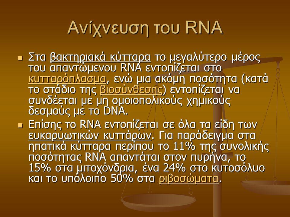 Ανίχνευση του RNA Στα βακτηριακά κύτταρα το μεγαλύτερο μέρος του απαντώμενου RNA εντοπίζεται στο κυτταρόπλασμα, ενώ μια ακόμη ποσότητα (κατά το στάδιο της βιοσύνθεσης) εντοπίζεται να συνδέεται με μη ομοιοπολικούς χημικούς δεσμούς με το DNA.