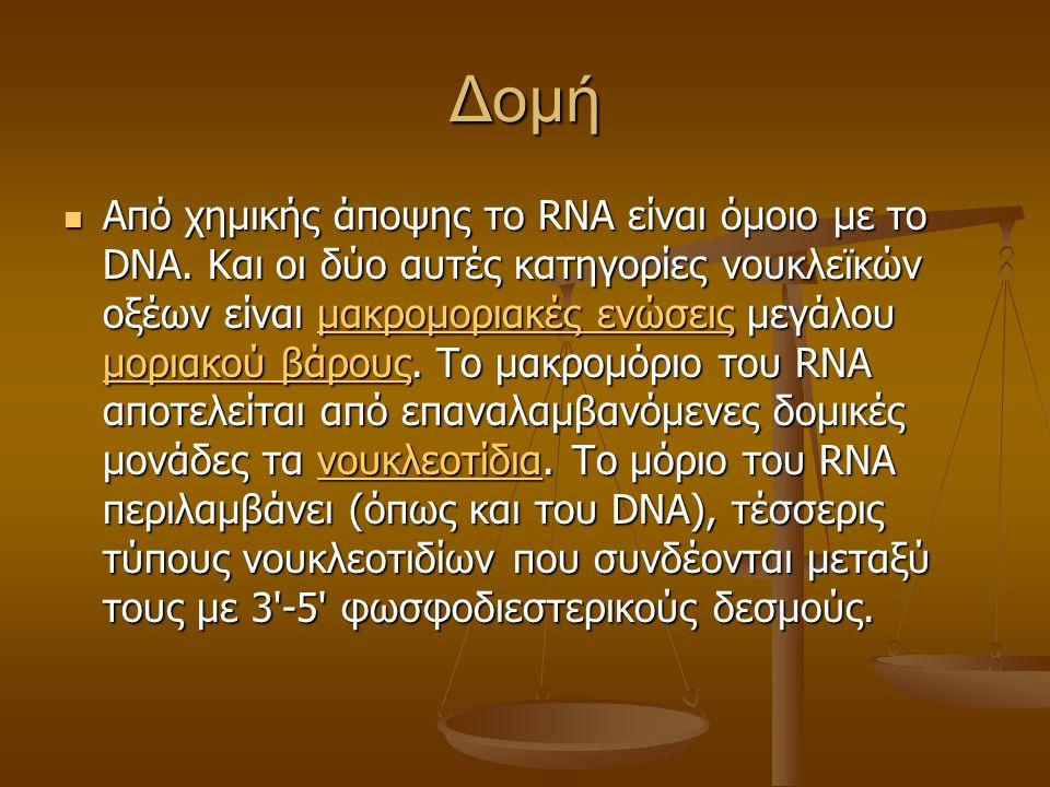 Δομή Από χημικής άποψης το RNA είναι όμοιο με το DNA. Και οι δύο αυτές κατηγορίες νουκλεϊκών οξέων είναι μακρομοριακές ενώσεις μεγάλου μοριακού βάρους