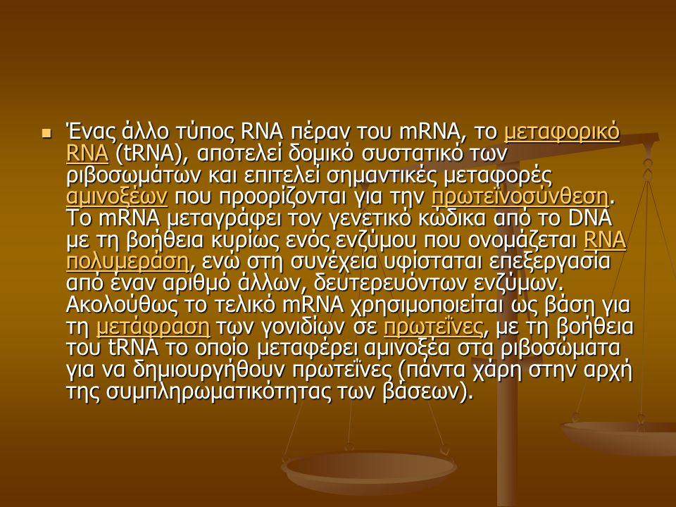 Ένας άλλο τύπος RNA πέραν του mRNA, το μεταφορικό RNA (tRNA), αποτελεί δομικό συστατικό των ριβοσωμάτων και επιτελεί σημαντικές μεταφορές αμινοξέων που προορίζονται για την πρωτεϊνοσύνθεση.