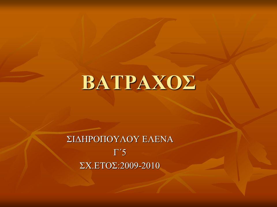 ΒΑΤΡΑΧΟΣ ΣΙΔΗΡΟΠΟΥΛΟΥ ΕΛΕΝΑ Γ΄5ΣΧ.ΕΤΟΣ:2009-2010