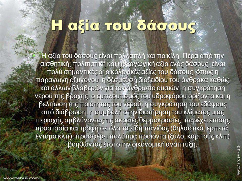 Η αξία του δάσους  Η αξία του δάσους είναι πολλαπλή και ποικίλη. Πέρα από την αισθητική, πολιτιστική και ψυχαγωγική αξία ενός δάσους, είναι πολύ σημα