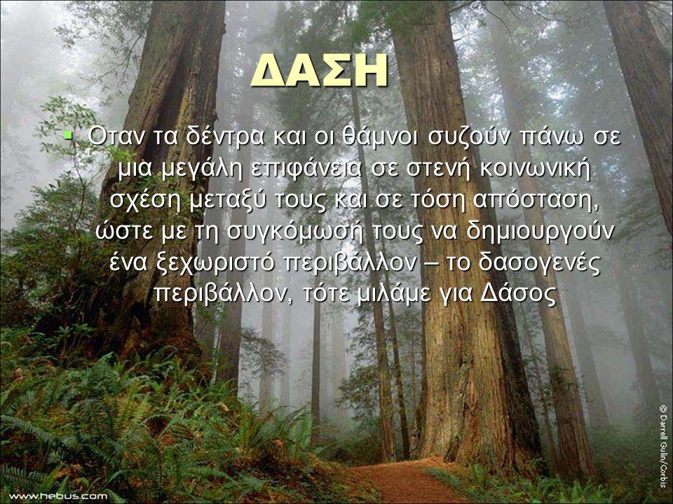 ΔΑΣΗ ΔΑΣΗ  Οταν τα δέντρα και οι θάμνοι συζούν πάνω σε μια μεγάλη επιφάνεια σε στενή κοινωνική σχέση μεταξύ τους και σε τόση απόσταση, ώστε με τη συγ