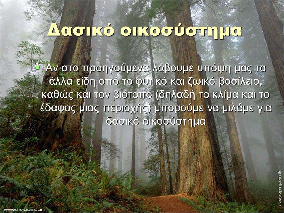 Δασικό οικοσύστημα  Αν στα προηγούμενα λάβουμε υπόψη μας τα άλλα είδη από το φυτικό και ζωικό βασίλειο, καθώς και τον βιότοπο (δηλαδή το κλίμα και το