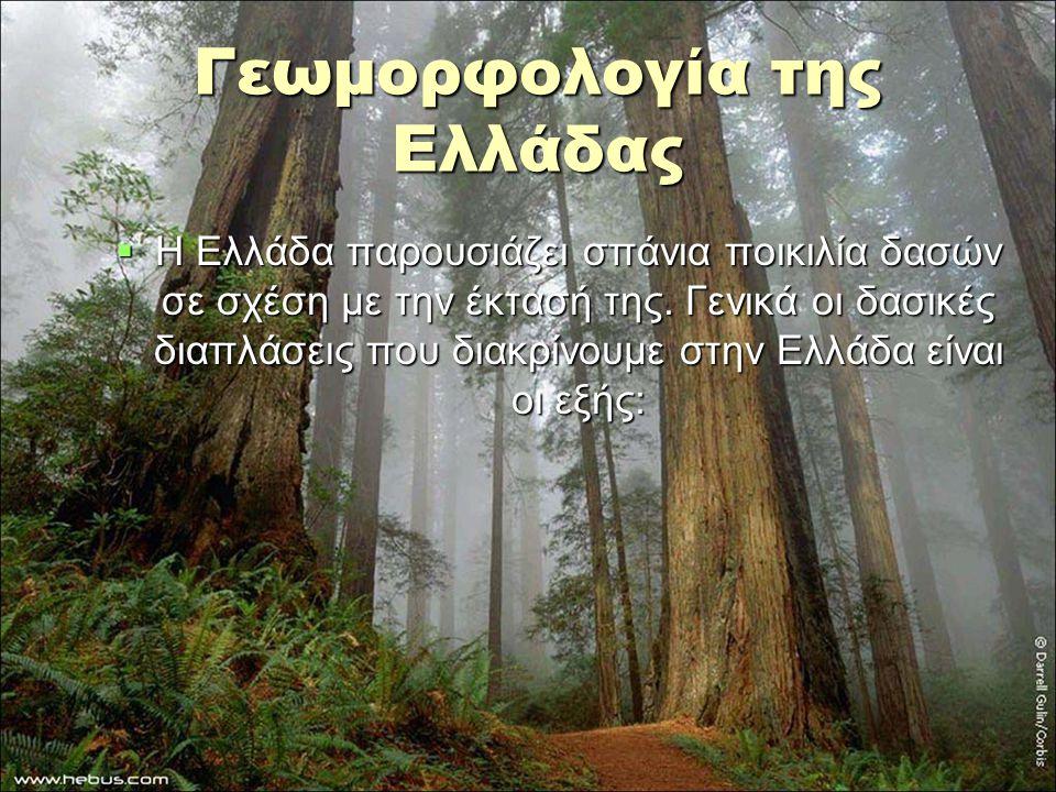 Γεωμορφολογία της Ελλάδας  Η Ελλάδα παρουσιάζει σπάνια ποικιλία δασών σε σχέση με την έκτασή της. Γενικά οι δασικές διαπλάσεις που διακρίνουμε στην Ε