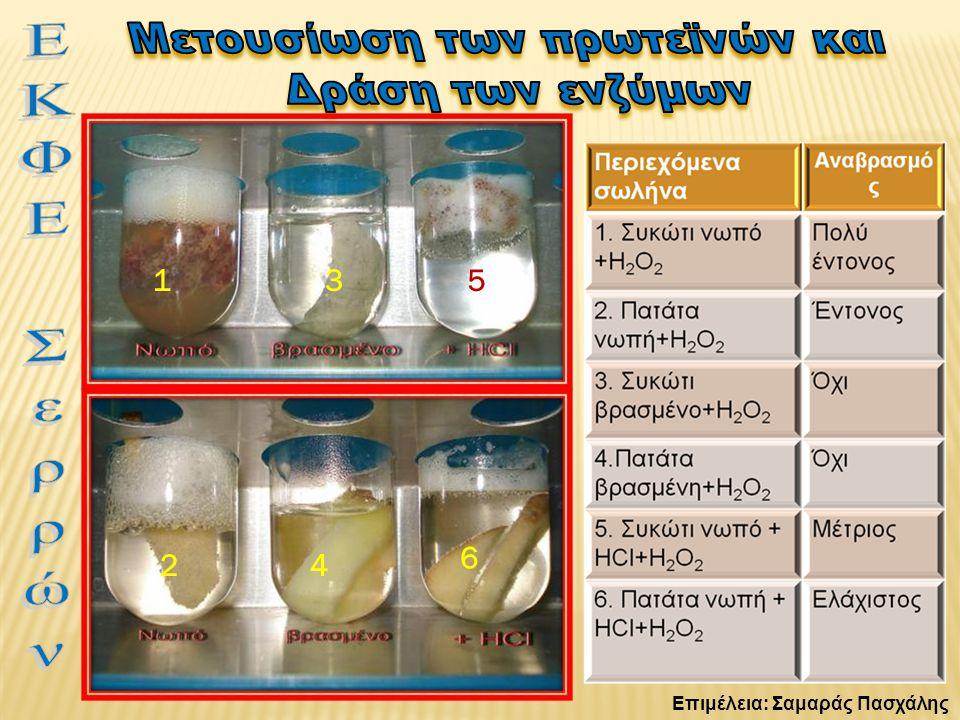 Μελέτη θερμότητας αντίδρασης Όργανα & υλικά:  Υπεροξείδιο του υδρογόνου (πυκνό).