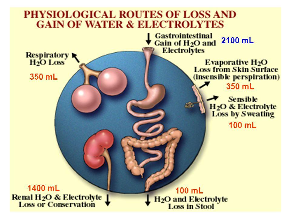 ΥΠΟΝΑΤΡΙΑΙΜΙΑ ΦΥΣΙΟΛΟΓΙΚΗ ΩΣΜΩΤΙΚΟΤΗΤΑ (280-295mosm/kg) 1.Υπερλιπιδαιμία (Τριγλυκερίδια, Χυλομικρά) 2.Υπερπρωτεϊναιμία (Μυέλωμα) ΨΕΥΔΟ ΥΠΟΝΑΤΡΙΑΙΜΙΑ Το πλάσμα περιέχει 93% νερό και 7% λίπος και πρωτείνες.