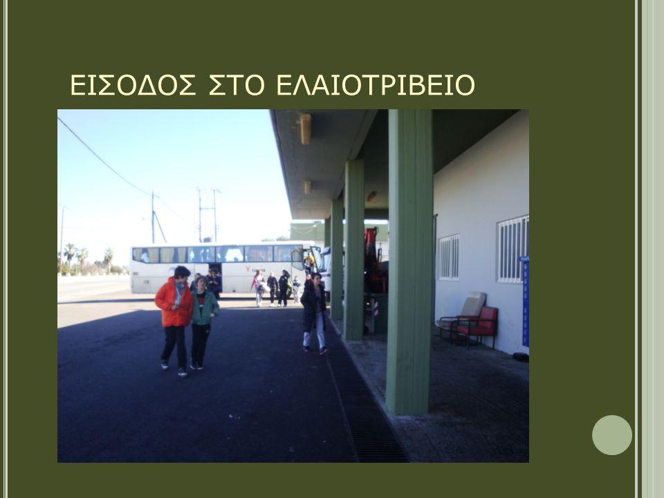 ΕΙΣΟΔΟΣ ΣΤΟ ΕΛΑΙΟΤΡΙΒΕΙΟ