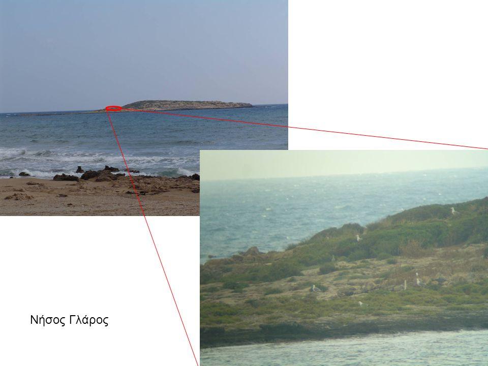 Νήσος Γλάρος