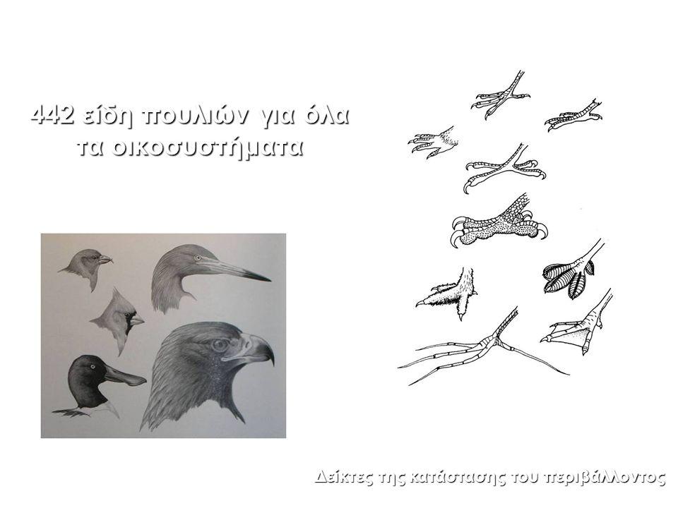 442 είδη πουλιών για όλα τα οικοσυστήματα Δείκτες της κατάστασης του περιβάλλοντος