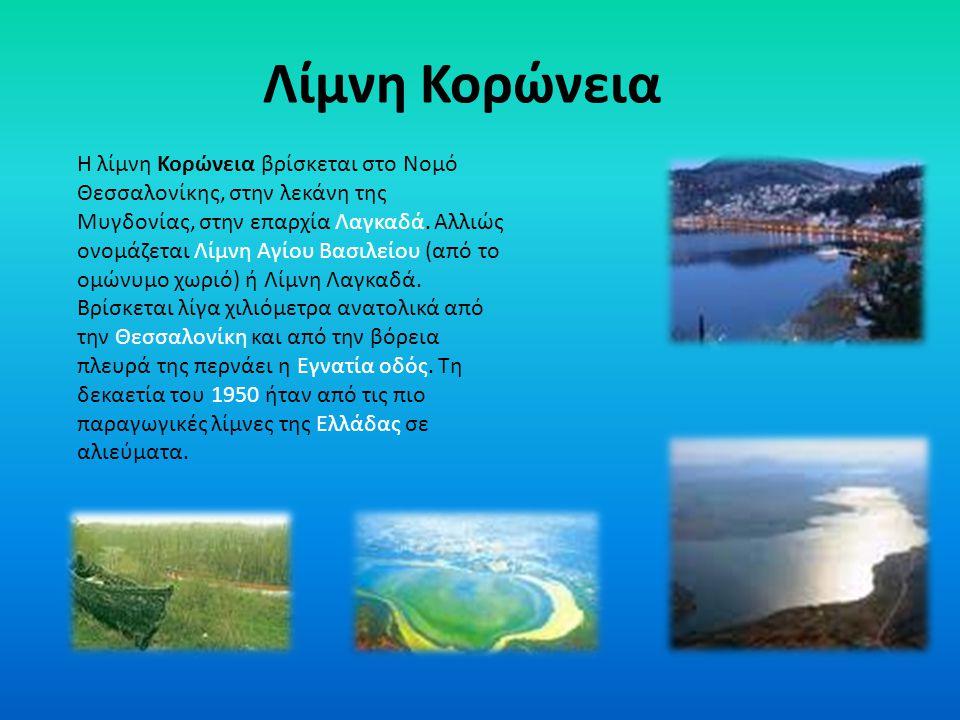 Φωτογραφίες της λίμνης Βόλβης