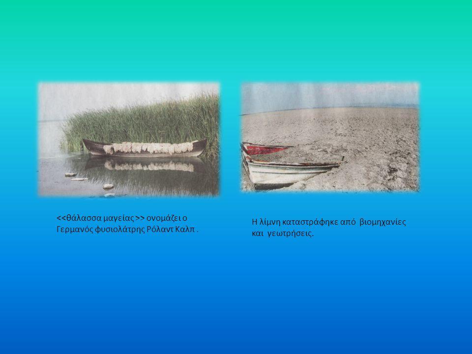 Λίμνη Κορώνεια Η λίμνη Κορώνεια βρίσκεται στο Νομό Θεσσαλονίκης, στην λεκάνη της Μυγδονίας, στην επαρχία Λαγκαδά. Αλλιώς ονομάζεται Λίμνη Αγίου Βασιλε