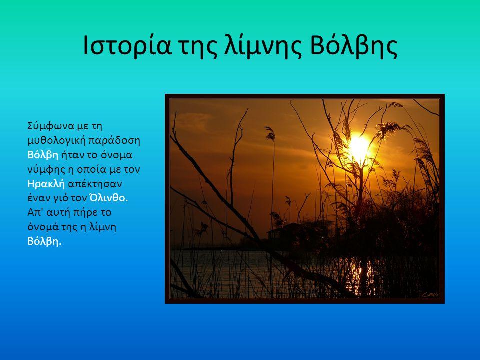 Ιστορία και μυθολογία των λιμνών ΒΟΛΒΗ ΣΤΥΜΦΑΛΙΑ ΚΩΡΟΝΙΑ