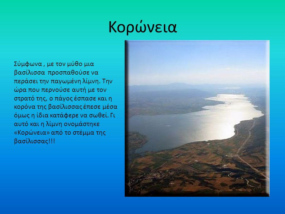 Ιστορία της λίμνης των Ιωαννίνων Η λίμνη συνδέεται με μια τραγική ιστορία, από τις πολλές στα χρόνια του Αλή, ο πνιγμός της όμορφης Κυρά- Φροσύνης μαζ