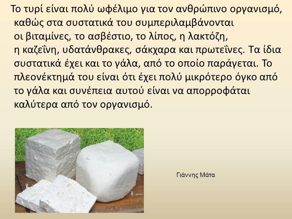 Το τυρί είναι πολύ ωφέλιμο για τον ανθρώπινο οργανισμό, καθώς στα συστατικά του συμπεριλαμβάνονται οι βιταμίνες, το ασβέστιο, το λίπος, η λακτόζη, η κ