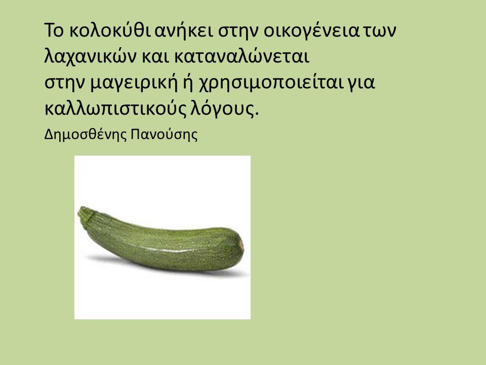 Το κολοκύθι ανήκει στην οικογένεια των λαχανικών και καταναλώνεται στην μαγειρική ή χρησιμοποιείται για καλλωπιστικούς λόγους. Δημοσθένης Πανούσης