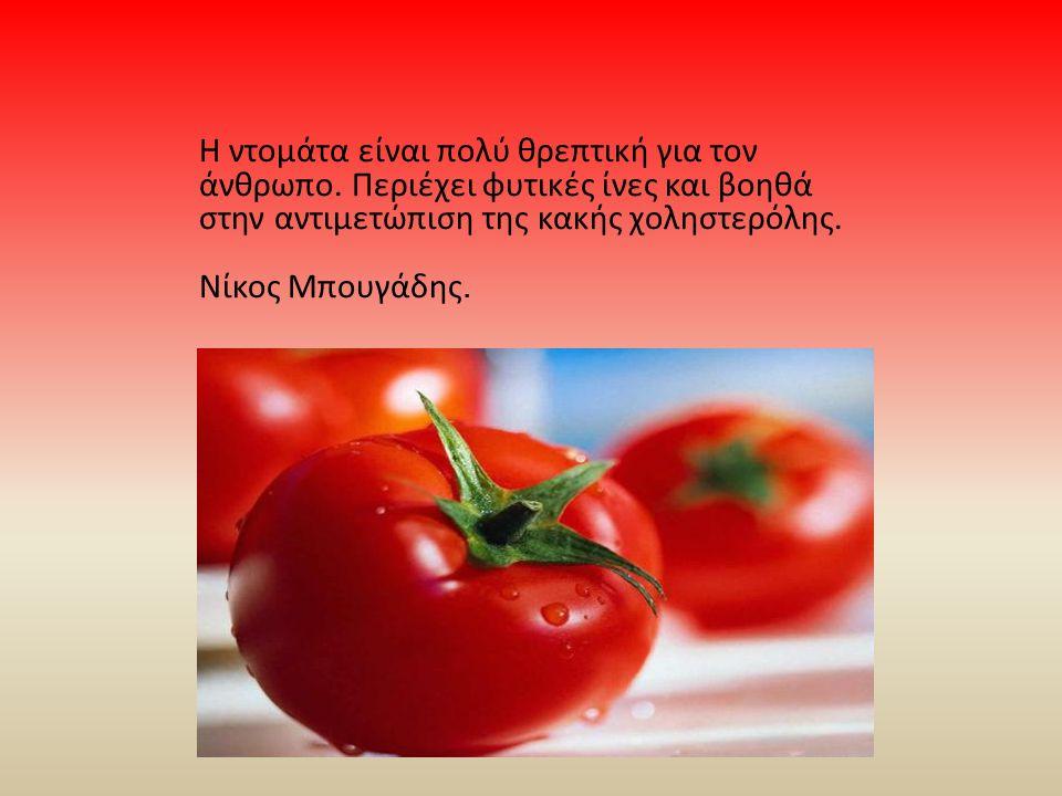 Η ντομάτα είναι πολύ θρεπτική για τον άνθρωπο. Περιέχει φυτικές ίνες και βοηθά στην αντιμετώπιση της κακής χοληστερόλης. Νίκος Μπουγάδης.