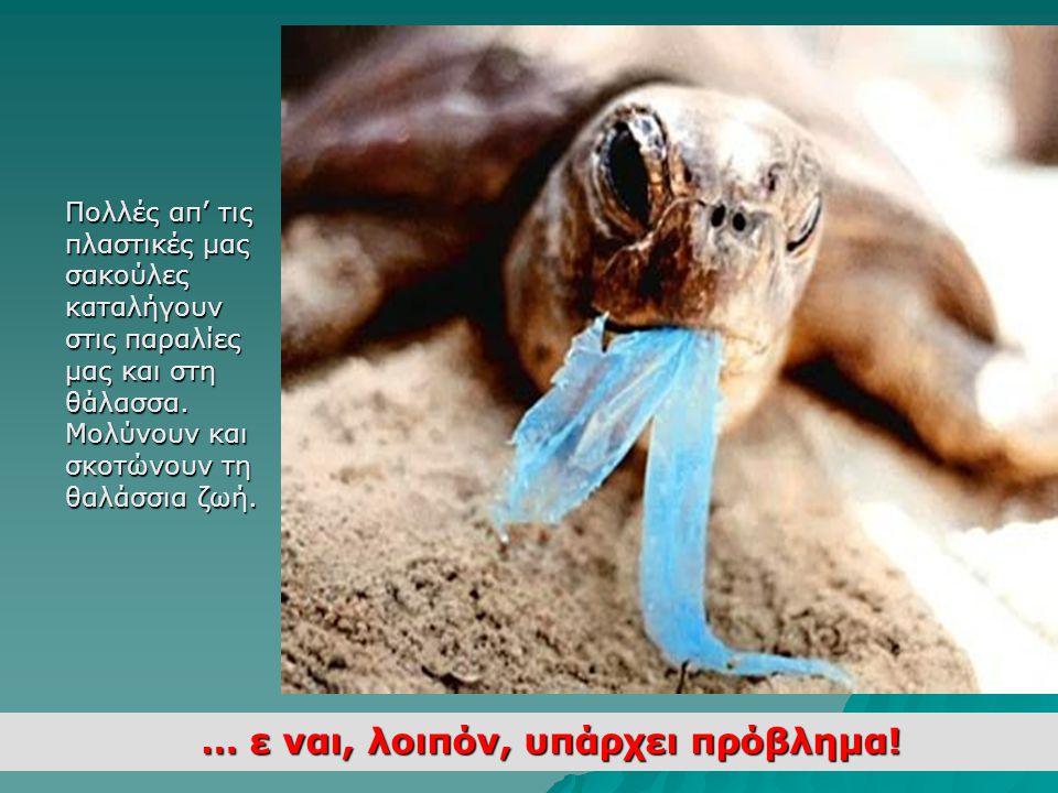 Πολλές απ' τις πλαστικές μας σακούλες καταλήγουν στις παραλίες μας και στη θάλασσα. Μολύνουν και σκοτώνουν τη θαλάσσια ζωή. … ε ναι, λοιπόν, υπάρχει π