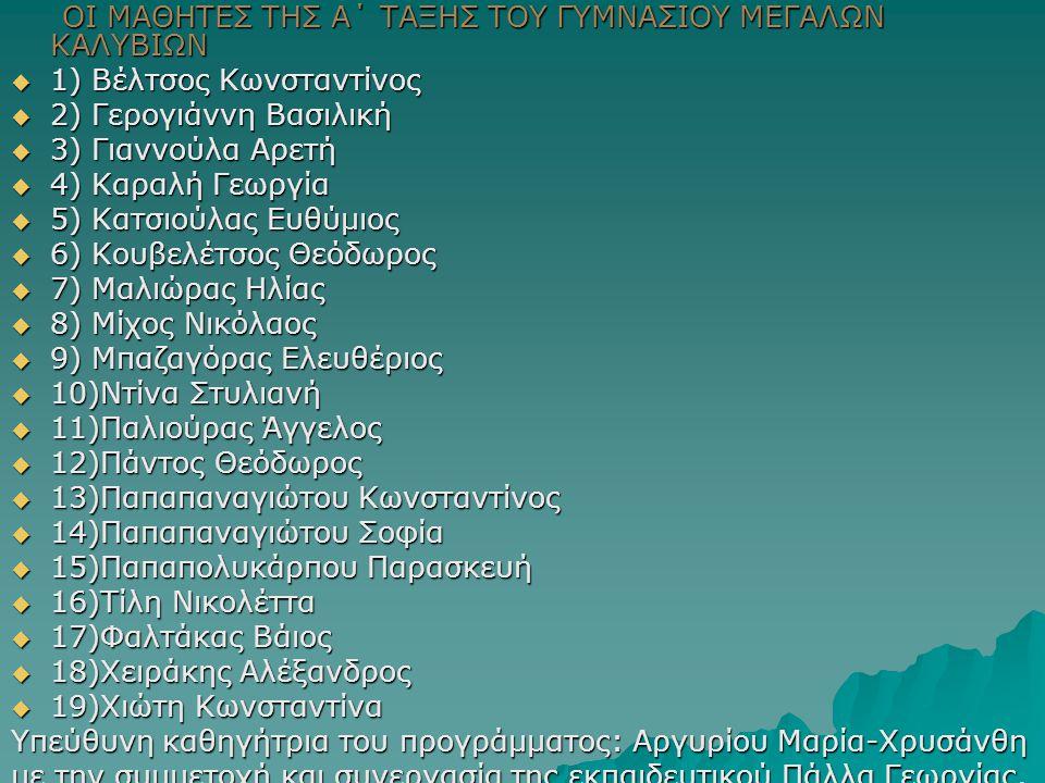 ΟΙ ΜΑΘΗΤΕΣ ΤΗΣ Α΄ ΤΑΞΗΣ ΤΟΥ ΓΥΜΝΑΣΙΟΥ ΜΕΓΑΛΩΝ ΚΑΛΥΒΙΩΝ ΟΙ ΜΑΘΗΤΕΣ ΤΗΣ Α΄ ΤΑΞΗΣ ΤΟΥ ΓΥΜΝΑΣΙΟΥ ΜΕΓΑΛΩΝ ΚΑΛΥΒΙΩΝ  1) Βέλτσος Κωνσταντίνος  2) Γερογιάνν