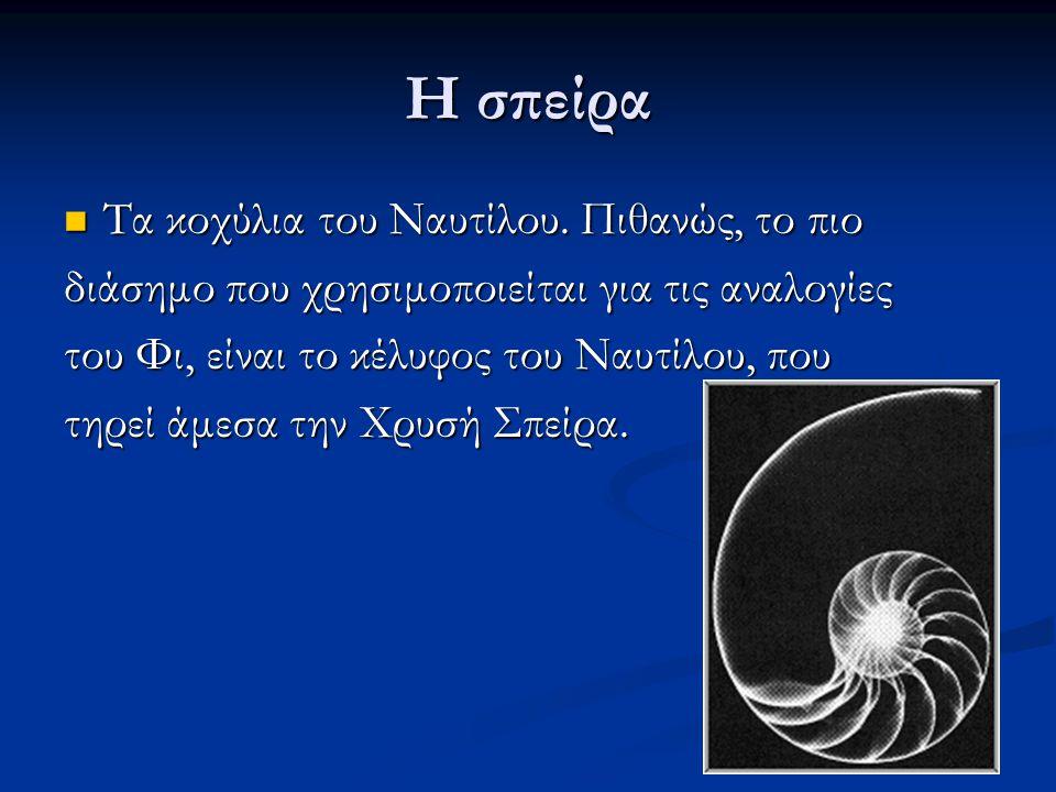 Η σπείρα Τα κοχύλια του Ναυτίλου. Πιθανώς, το πιο Τα κοχύλια του Ναυτίλου. Πιθανώς, το πιο διάσημο που χρησιμοποιείται για τις αναλογίες του Φι, είναι