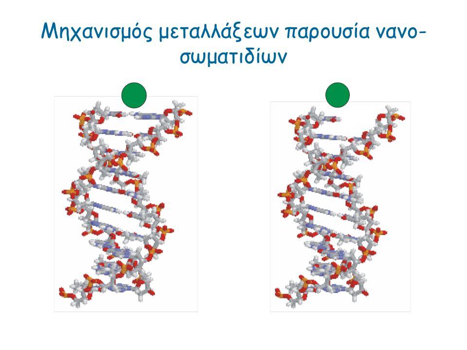 Μηχανισμός μεταλλάξεων παρουσία νανο- σωματιδίων