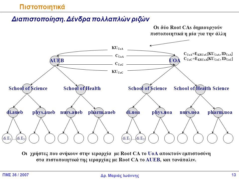 13ΠΜΣ 36 / 2007 Δρ.