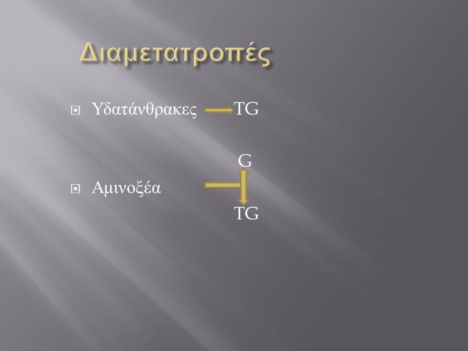  Υδατάνθρακες TG G  Αμινοξέα TG