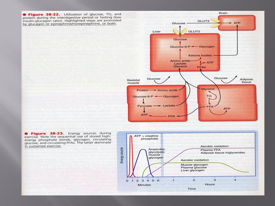  Περίπου το ίδιο ποσό Ο 2 απαιτείται για να οξειδωθεί κάθε C και H.