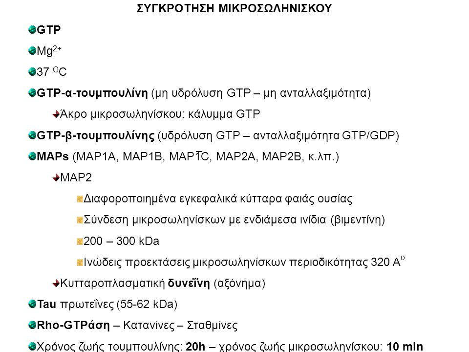 ΣΥΓΚΡΟΤΗΣΗ ΜΙΚΡΟΣΩΛΗΝΙΣΚΟΥ GTP Mg 2+ 37 O C GTP-α-τουμπουλίνη (μη υδρόλυση GTP – μη ανταλλαξιμότητα) Άκρο μικροσωληνίσκου: κάλυμμα GTP GTP-β-τουμπουλί