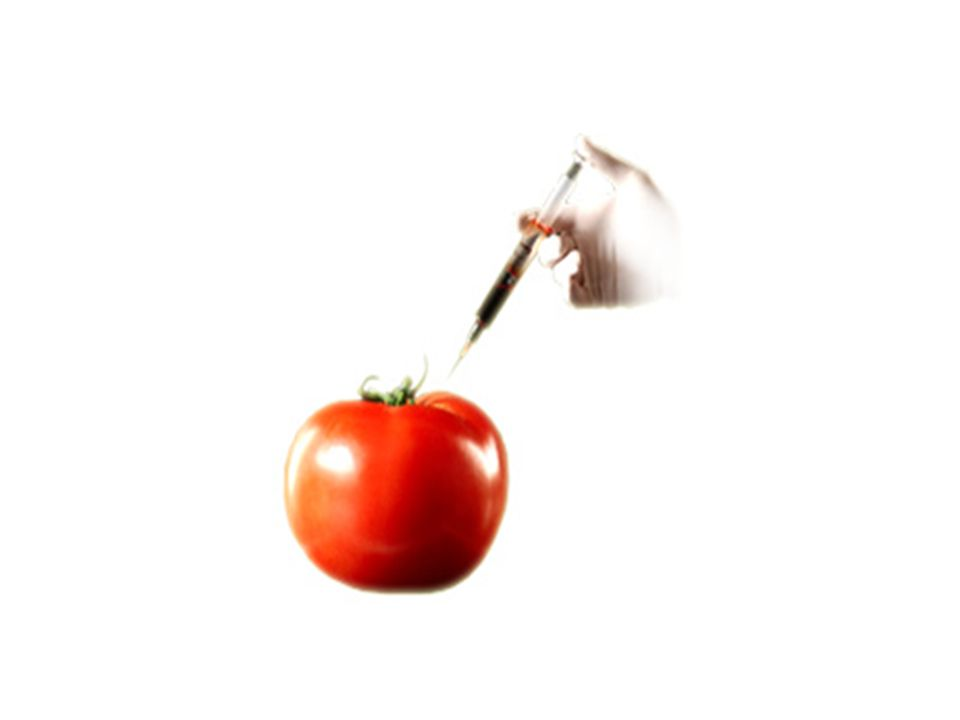 Τι μπορείτε να κάνετε εσείς Αποκτήστε τρόφιμα απαλλαγμένα από μεταλλαγμένα συστατικά Αλληλογραφήστε με τους βουλευτές Υποστηρίξτε τους μικροκαλλιεργητές και τους άλλους αγρότες Μπείτε στο Δίκτυο Καταναλωτών ενάντιων των μεταλλαγμένων