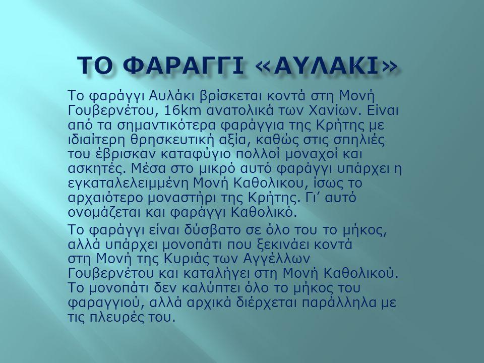 Το φαράγγι Αυλάκι βρίσκεται κοντά στη Μονή Γουβερνέτου, 16km ανατολικά των Χανίων. Είναι από τα σημαντικότερα φαράγγια της Κρήτης με ιδιαίτερη θρησκευ