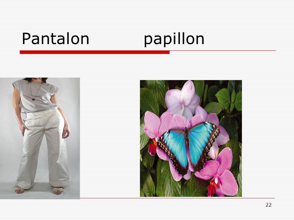 22 Pantalon papillon