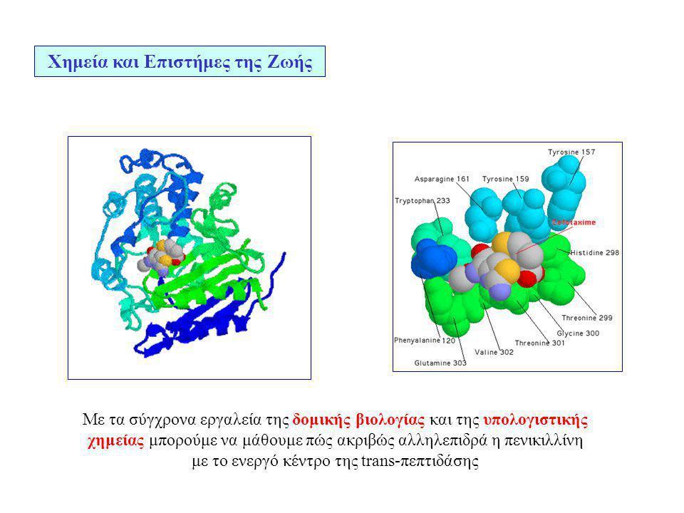 Χημεία και Επιστήμες της Ζωής Με τα σύγχρονα εργαλεία της δομικής βιολογίας και της υπολογιστικής χημείας μπορούμε να μάθουμε πώς ακριβώς αλληλεπιδρά