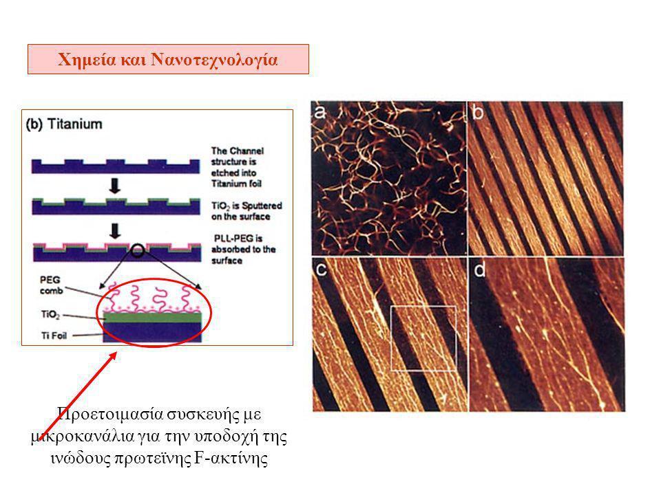 Χημεία και Νανοτεχνολογία Προετοιμασία συσκευής με μικροκανάλια για την υποδοχή της ινώδους πρωτεϊνης F-ακτίνης