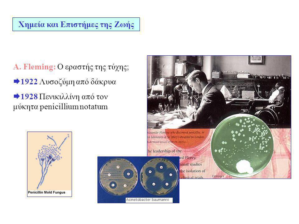 Α. Fleming: Ο εραστής της τύχης;  1922 Λυσοζύμη από δάκρυα  1928 Πενικιλλίνη από τον μύκητα penicillium notatum