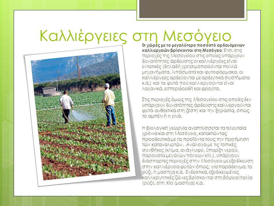 Καλλιέργειες στη Μεσόγειο 0ι χώρες με το μεγαλύτερο ποσοστό αρδευόμενων καλλιεργειών βρίσκονται στη Μεσόγειο.