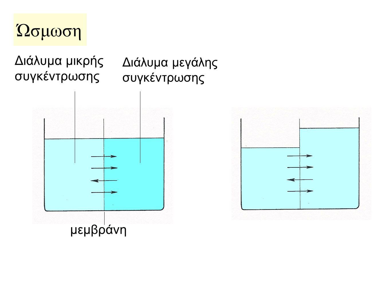 Διάλυμα μικρής συγκέντρωσης Διάλυμα μεγάλης συγκέντρωσης μεμβράνη