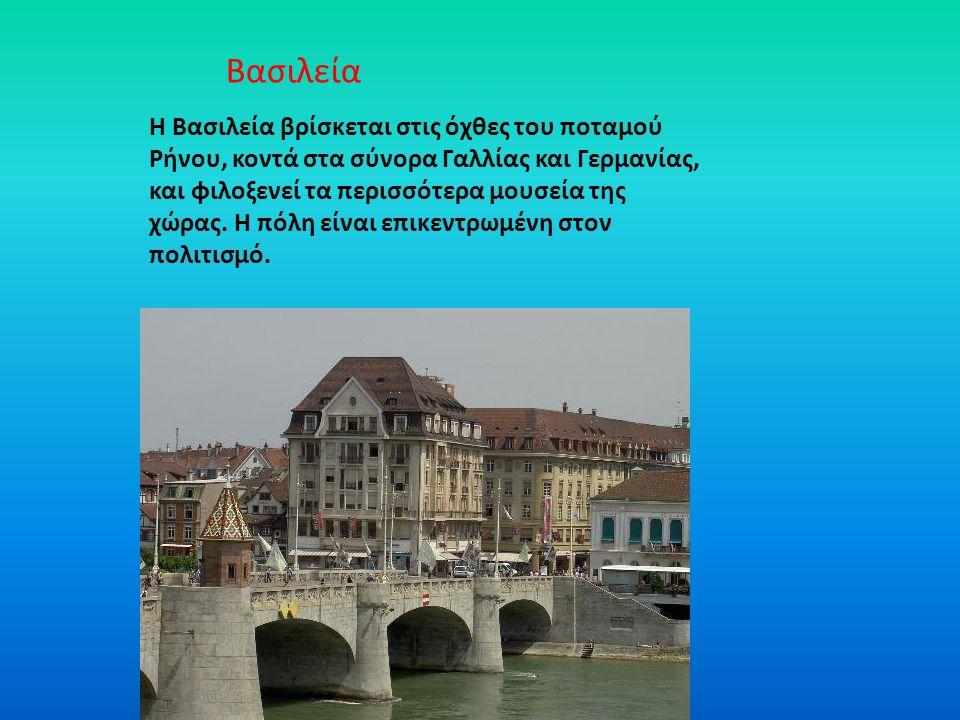 Η Βασιλεία βρίσκεται στις όχθες του ποταμού Ρήνου, κοντά στα σύνορα Γαλλίας και Γερμανίας, και φιλοξενεί τα περισσότερα μουσεία της χώρας. Η πόλη είνα